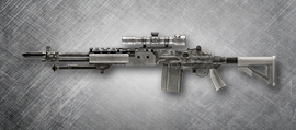 Assault Rifles - M14 EBR